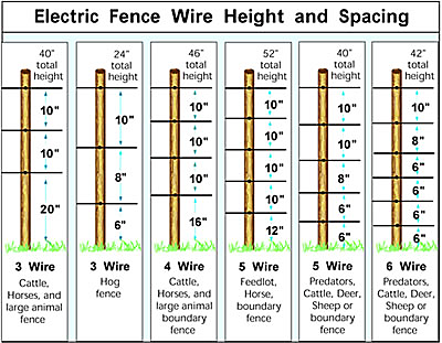 electric fence wire heights