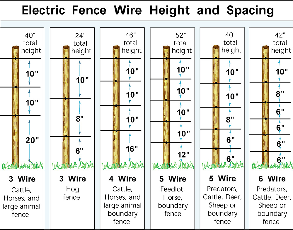 Electric Fence for Pigs | Electric Hog Fencing - Zareba
