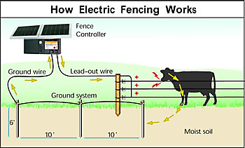how does an electric fence work zareba rh zarebasystems com solar electric fence wiring diagram security electric fence wiring diagram
