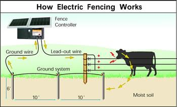 How Eelctric Fencing works - diagram