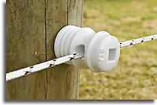 1000-Feet Checkered ElectroBraid PBRC1000C2-EB Horse Fence Conductor Reel