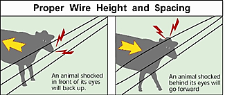 1000 FT Aluminized Steel 12.5 Gauge < Electric Fence Wire   Zareba
