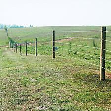 Fence running along rolling hills