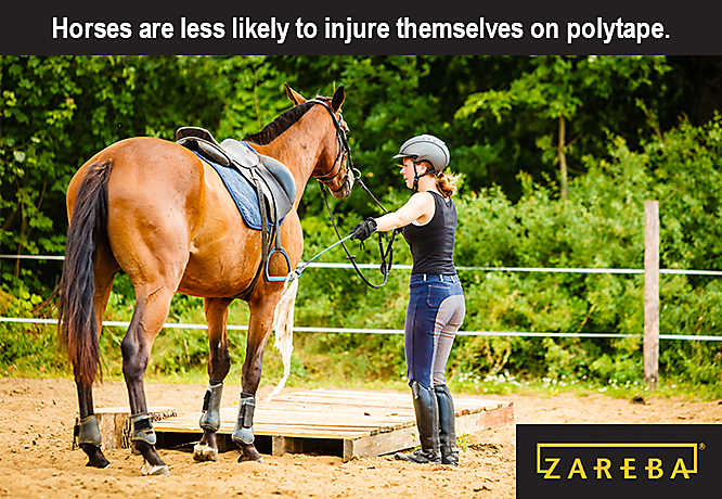 Is Polytape Good for Horses?