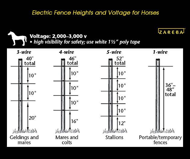 how tall should an electric fence be