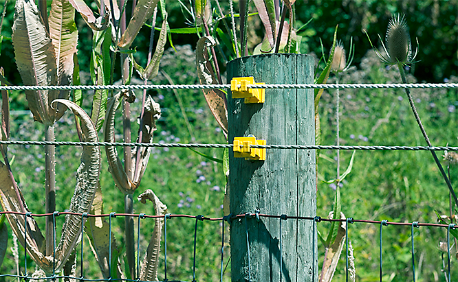 Weeds got your electric fence power down?